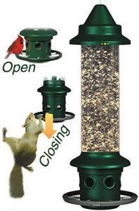 Brome 1024 Squirrel Buster Plus Wild Bird Feeder With Cardinal Perch Ring Review 2017
